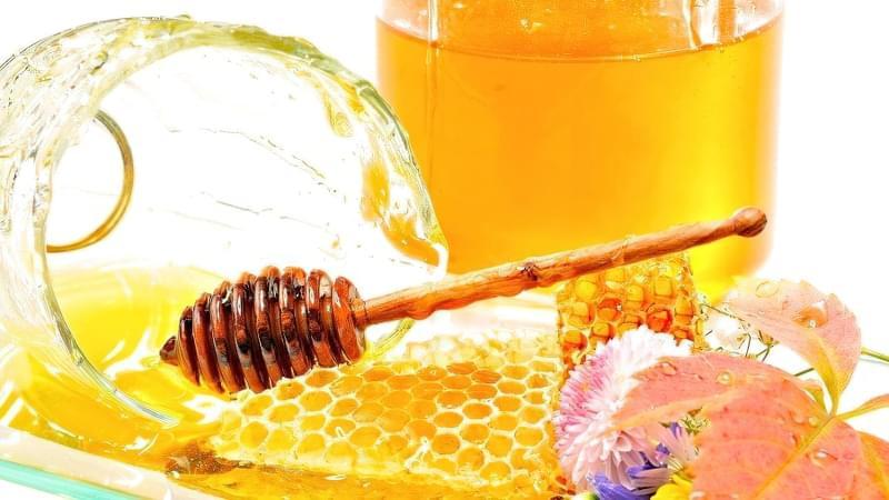 мед для вкорінення