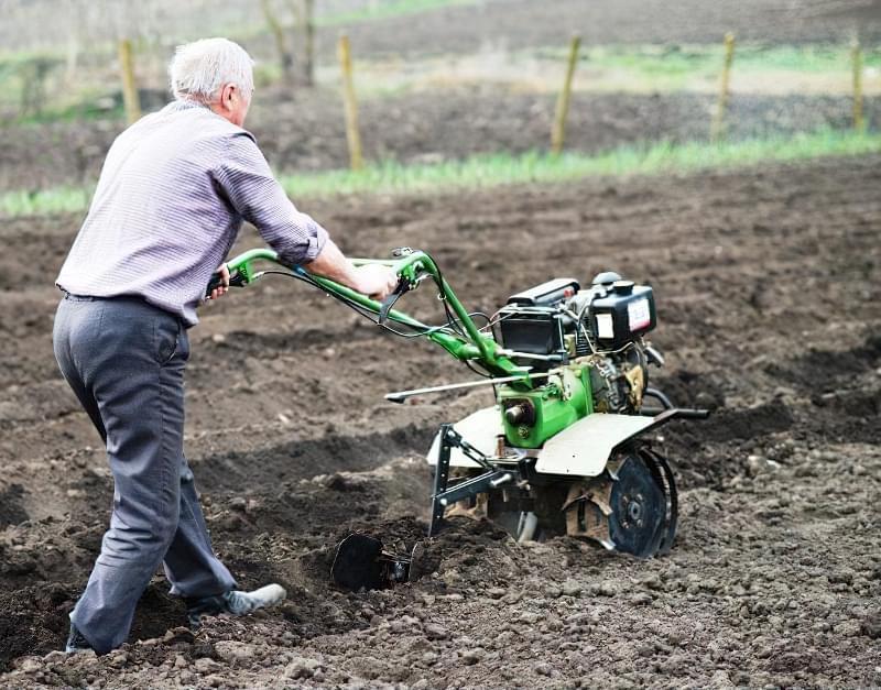Підготовка картоплі до посадки навесні: коли починати, чим обробити 8