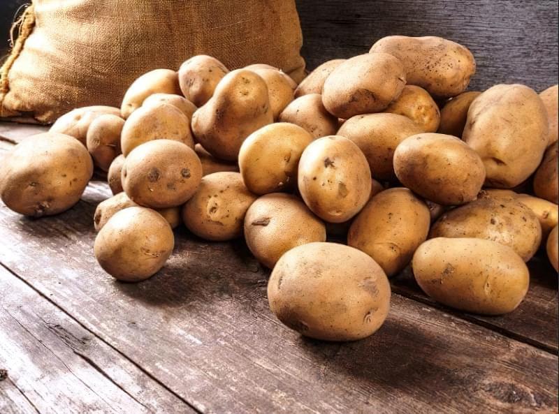 Підготовка картоплі до посадки навесні: коли починати, чим обробити 1