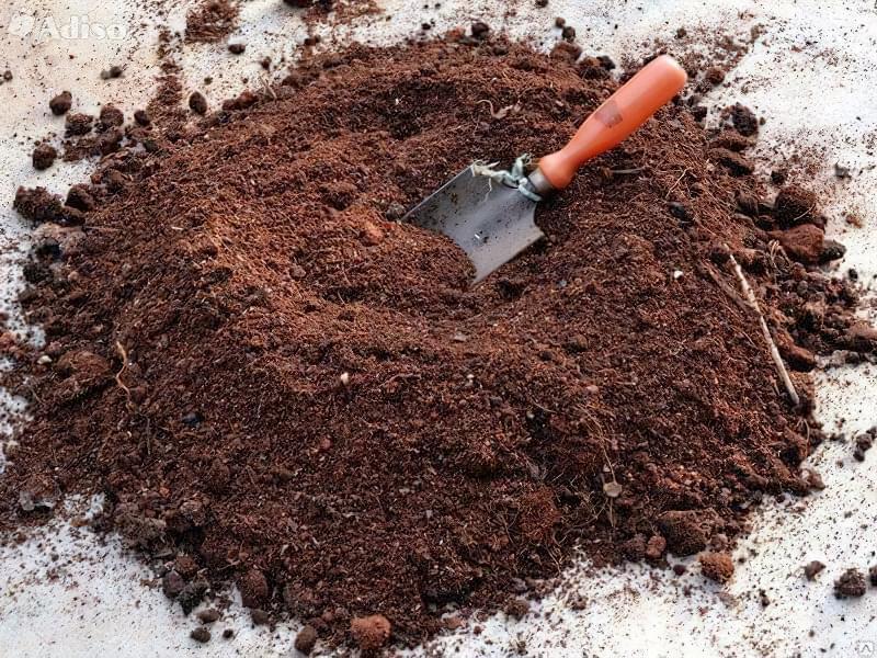 Що таке іонітопоніка і як використовується технологія при вирощуванні розсади 1