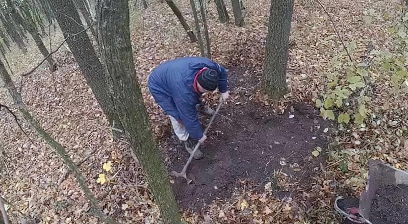 Способи знезараження землі перед посадкою насіння на розсаду 1