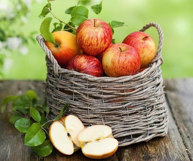 Як зберігати яблука щоб довго не псувались 41