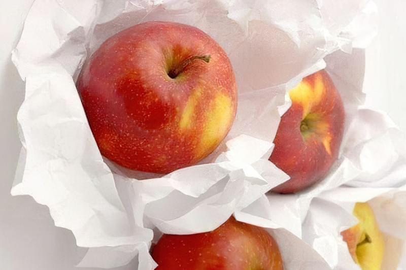 Як зберігати яблука щоб довго не псувались 5