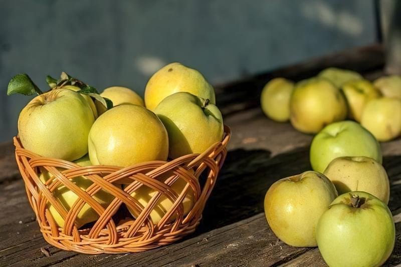Як зберігати яблука щоб довго не псувались 7