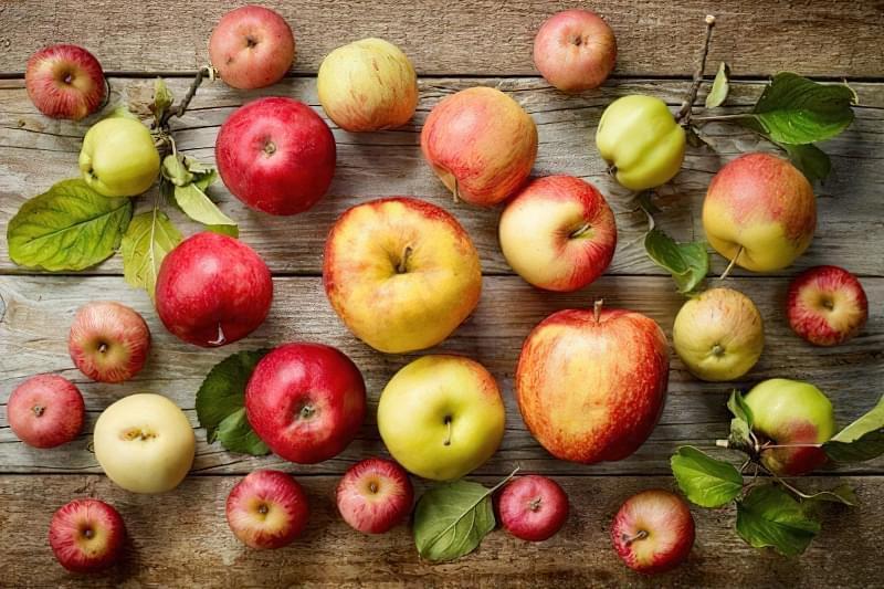 Як зберігати яблука щоб довго не псувались 1