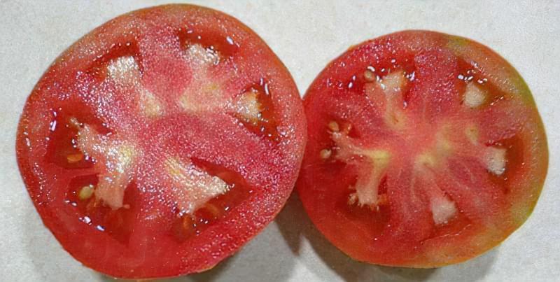 Чому всередині у помідорів білі жорсткі прожилки або тверда серцевина 12
