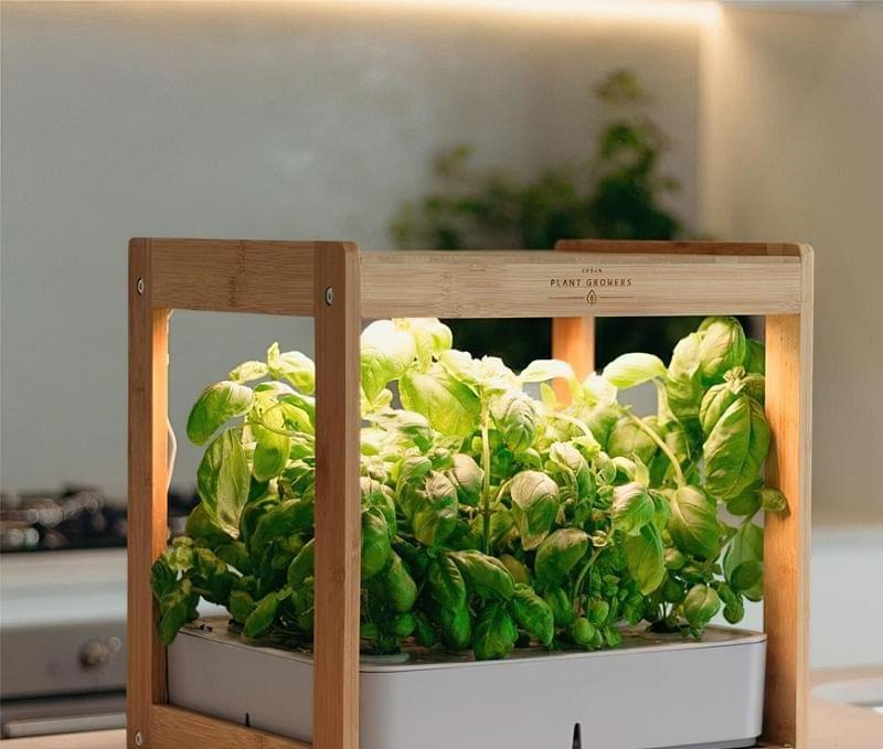 """Smart Garden: особливості, плюси і мінуси """"розумних садів"""" 2"""