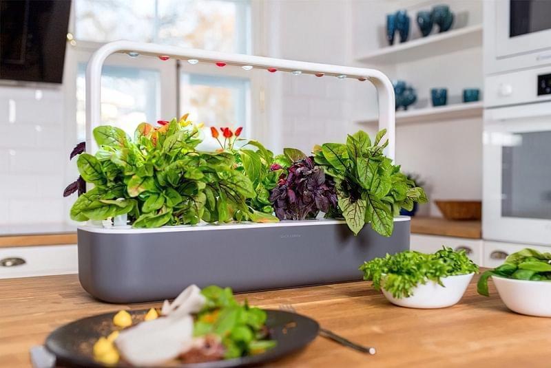 """Smart Garden: особливості, плюси і мінуси """"розумних садів"""" 3"""