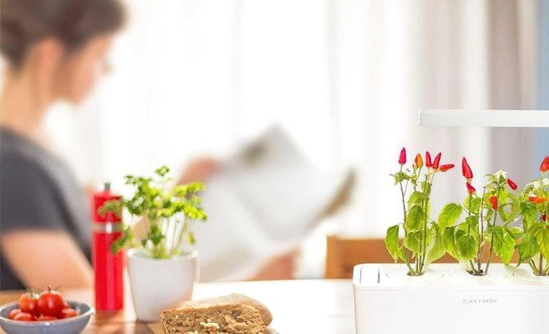 """Smart Garden: особливості, плюси і мінуси """"розумних садів"""" 5"""