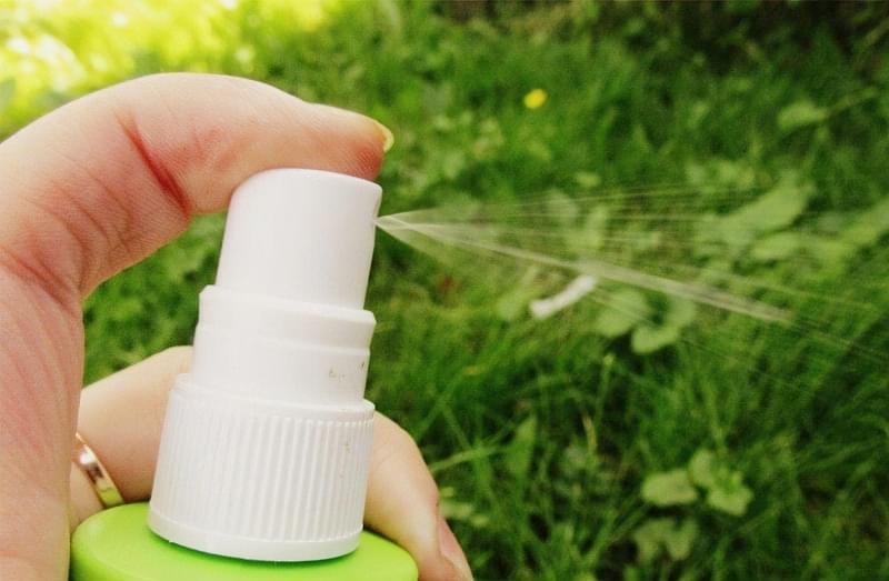 Всі способи позбавлення від комарів на ділянці 2