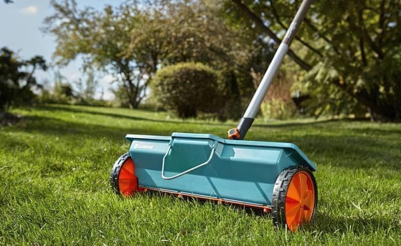 Як правильно садити газон навесні: терміни і технологія посадки 10