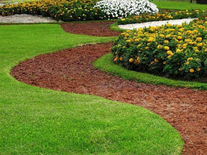 Як правильно садити газон навесні: терміни і технологія посадки 3