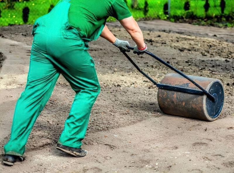 Як правильно садити газон навесні: терміни і технологія посадки 9