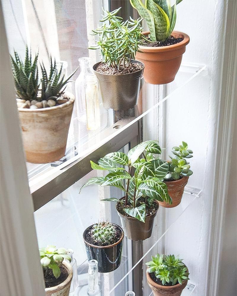 Стелажі і полиці для кімнатних рослин: види та приклади 5