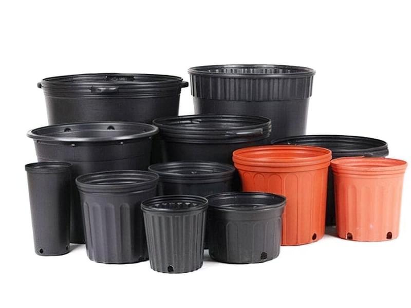 Вибір горщиків і контейнерів для рослин 2