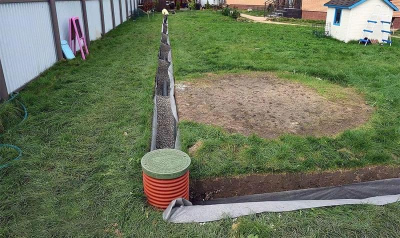 Затоплення ділянки: як врятувати рослини 3