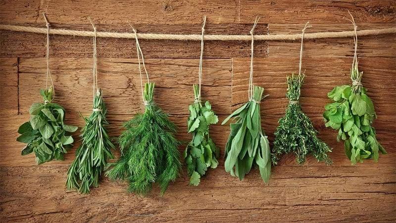 Як засушити зелень на зиму 3