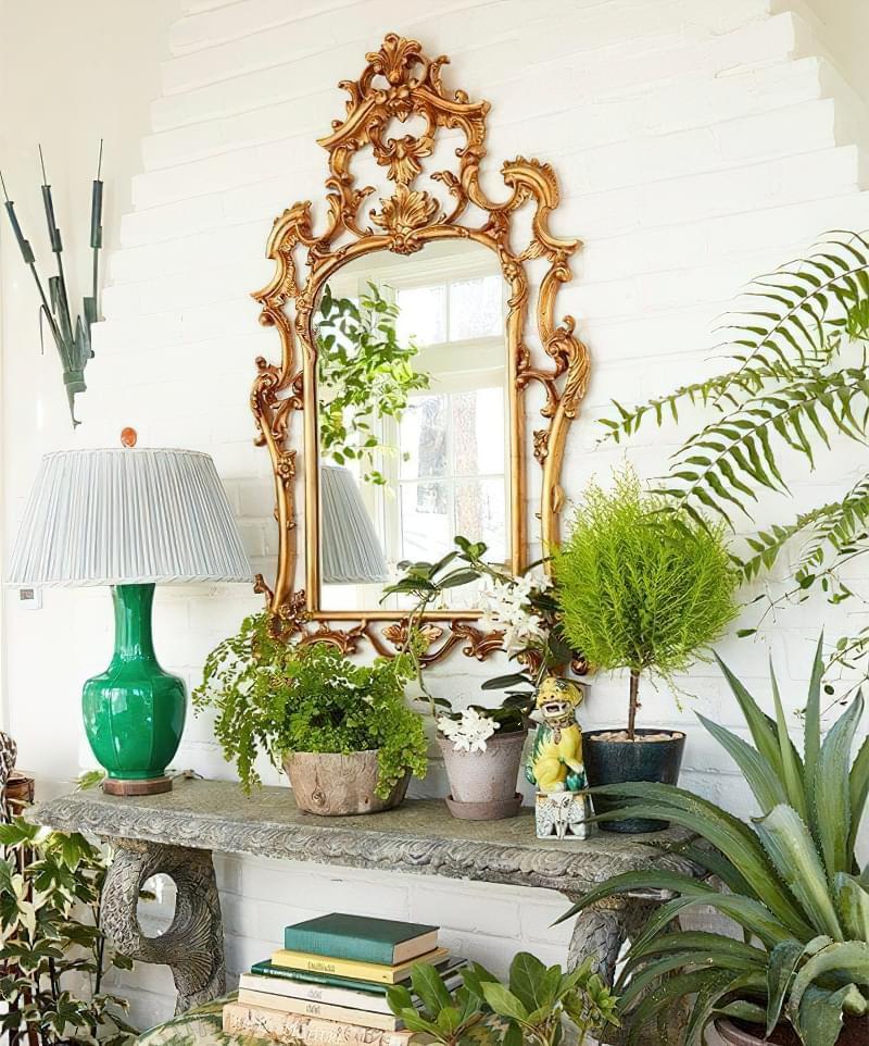 Цікаві способи розмістити кімнатні рослини 12