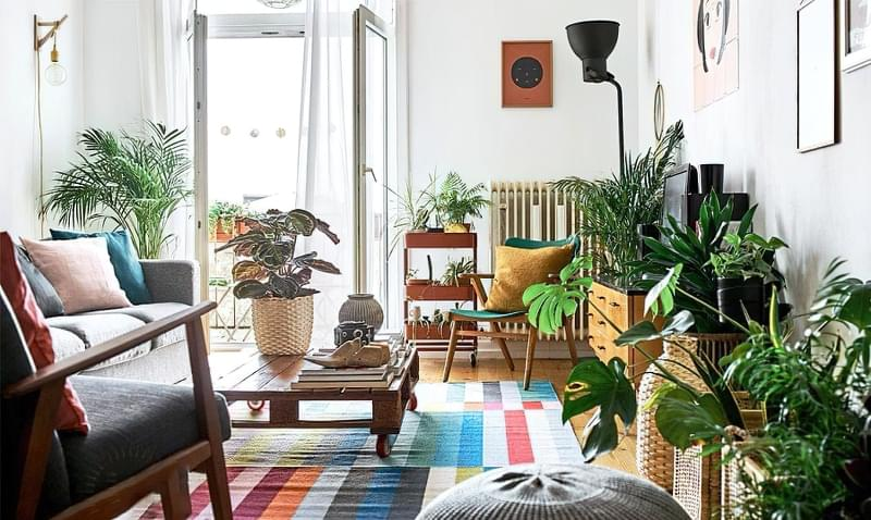Цікаві способи розмістити кімнатні рослини 1